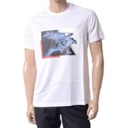 エンポリオアルマーニ プリントTシャツ ジャージーマーセライズドコットン ホワイト